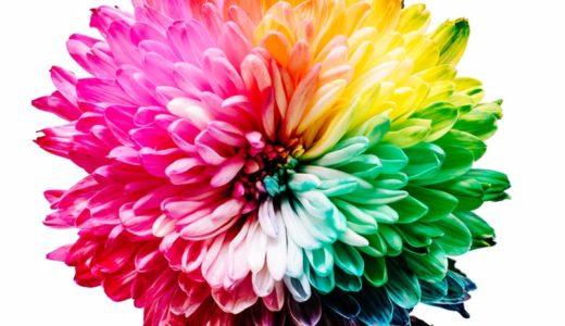 色彩検定3級に2週間で合格する方法!