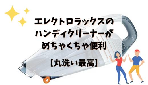 エレクトロラックスのハンディクリーナーがめちゃくちゃ便利【丸洗い最高】