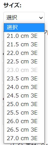 靴のサイズ表