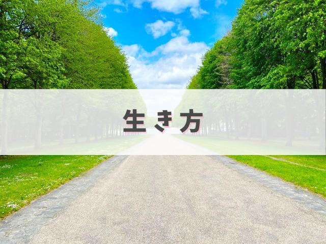 林の中の一本道
